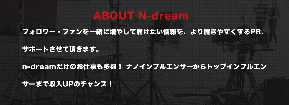 N-Dreamについて