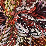 'Bush Medicine Leaves and Seeds' (detail) by Caroline Numina