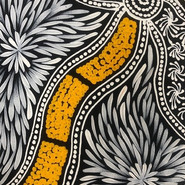 'Bush Medicine Leaves and Seeds' (detail) by Sharon Numina