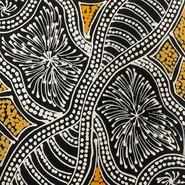 'Bush Medicine Seeds' (detail) by Sharon Numina