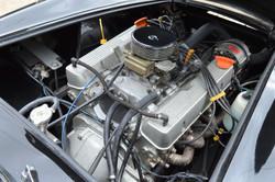 BRA 289 Cobra