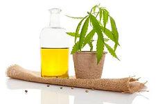 Phytocosmo Cannabis Sativa L dans la gam
