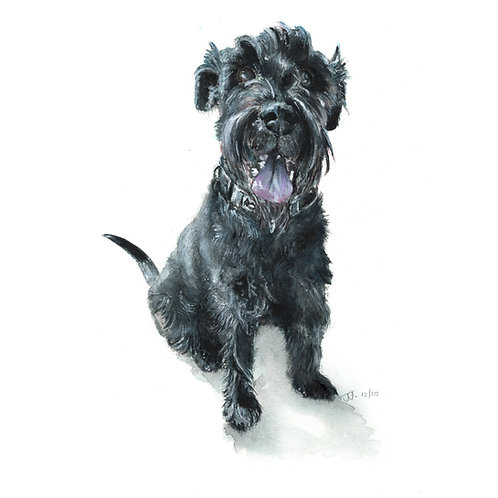 Made to Order, Animal/Pet Portrait, Unframed