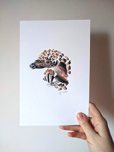 Pangolin_edited.jpg