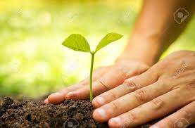 Impact Investing: Is it Working?