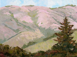 Pink Nicasio View