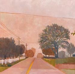 Pink Drive