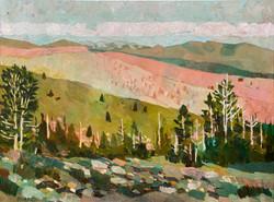 Sonora Pass Sage