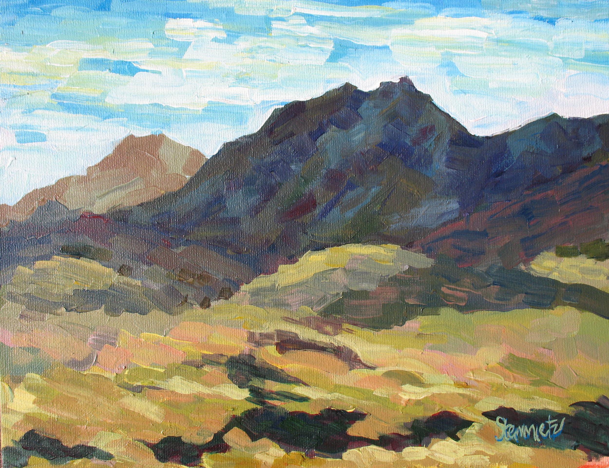 Tuscon Hills