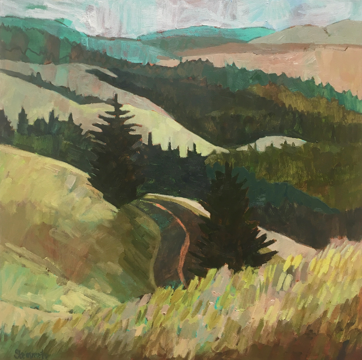 Summer Road, Mount Tamalpais