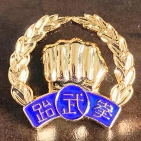 7-9th Dan Black Belt Gold plated Lapel Pin