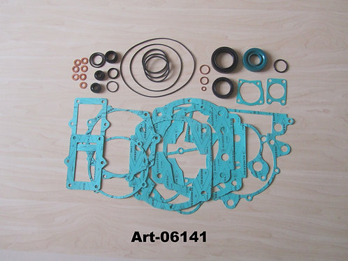 Complete seals and gasket kit ZM29