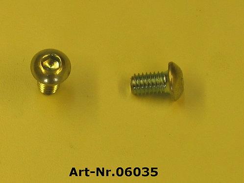 oval-head srew M6x10 mm