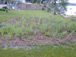 Photo 1 Rain Garden .JPG