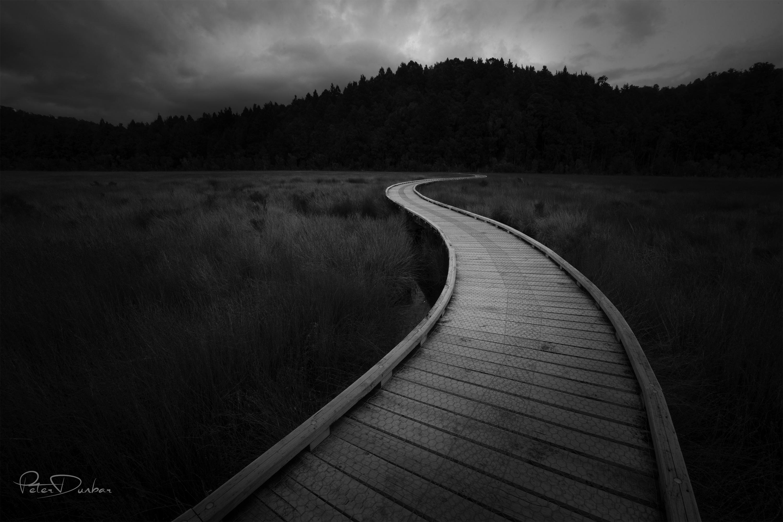 Okarito Board Walk