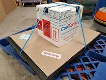 cool cargo parcel service.jpg