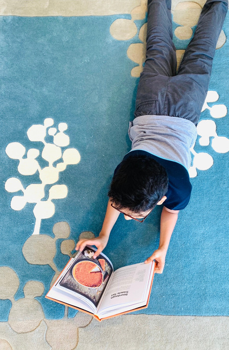 Blueberry Hand-tufted Carpet