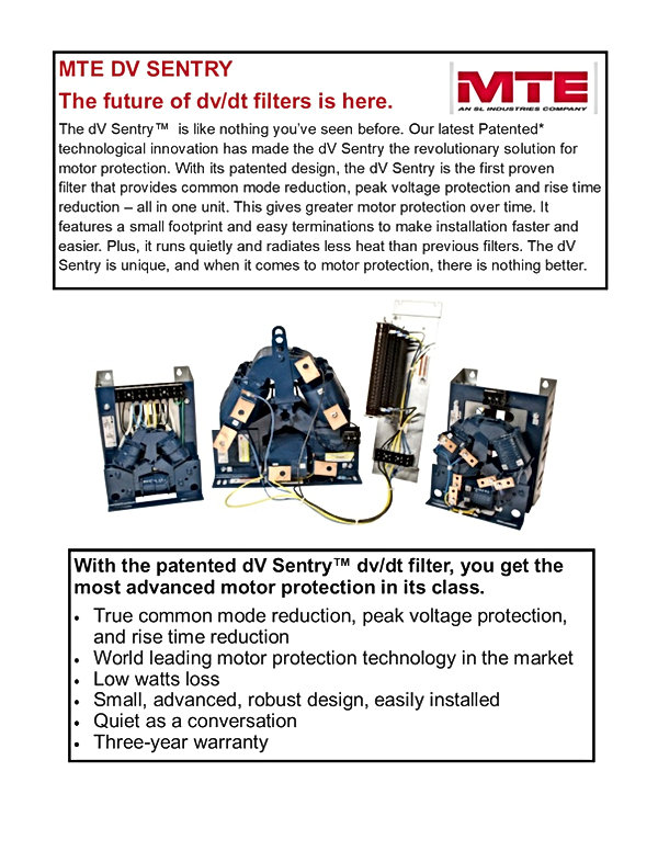 MTE DV Sentry flyer for website.jpg