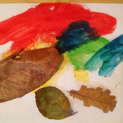 leaf picture 2.jpg