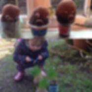 Grass heads.jpg
