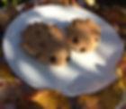 Hedgehog bread.jpg