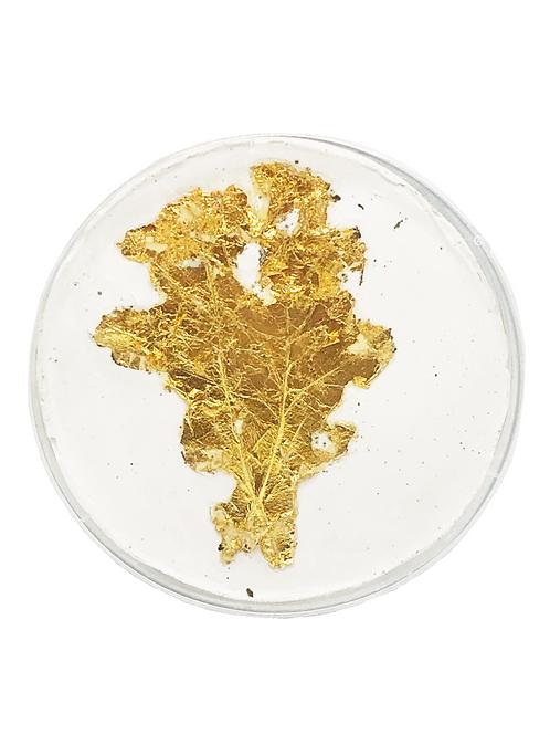 Ghost, Gold Leaf in a Petri Dish