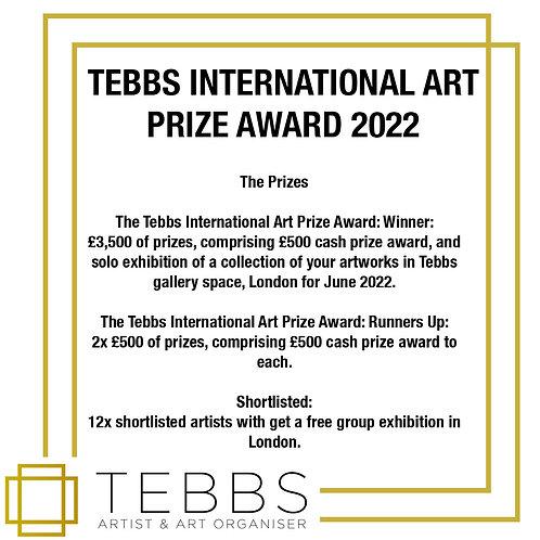 Tebbs International Art Prize Award 2022