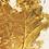 Thumbnail: Ghost, Gold Leaf in a Petri Dish