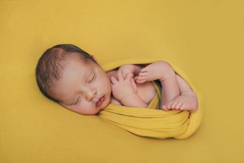 Newborn Photo Session | Tallahassee, FL