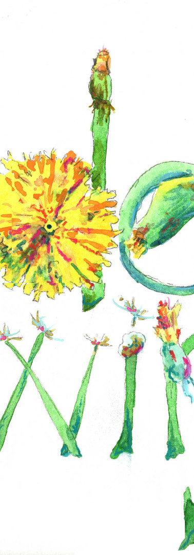 """Hand Drawn """"Dandelion"""" Type by Anne Gregory"""
