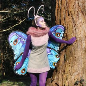 Gypsy Moth: A Bug's Life