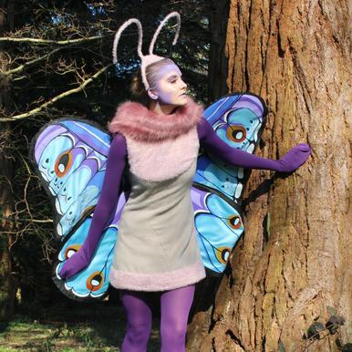 Gypsy Moth - A Bug's Life