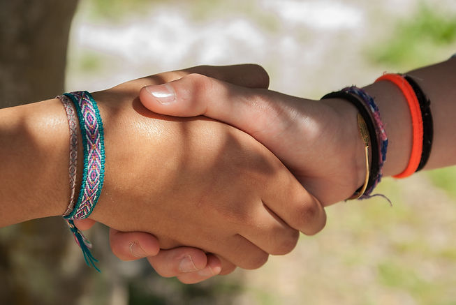 Canva - People Shaking Hands.jpg