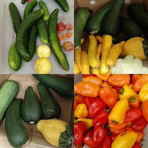 Freshproduce.jpg