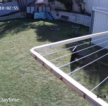 4Mp Hilook Camera, daytime