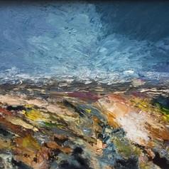 Wind and Light Studland Heath