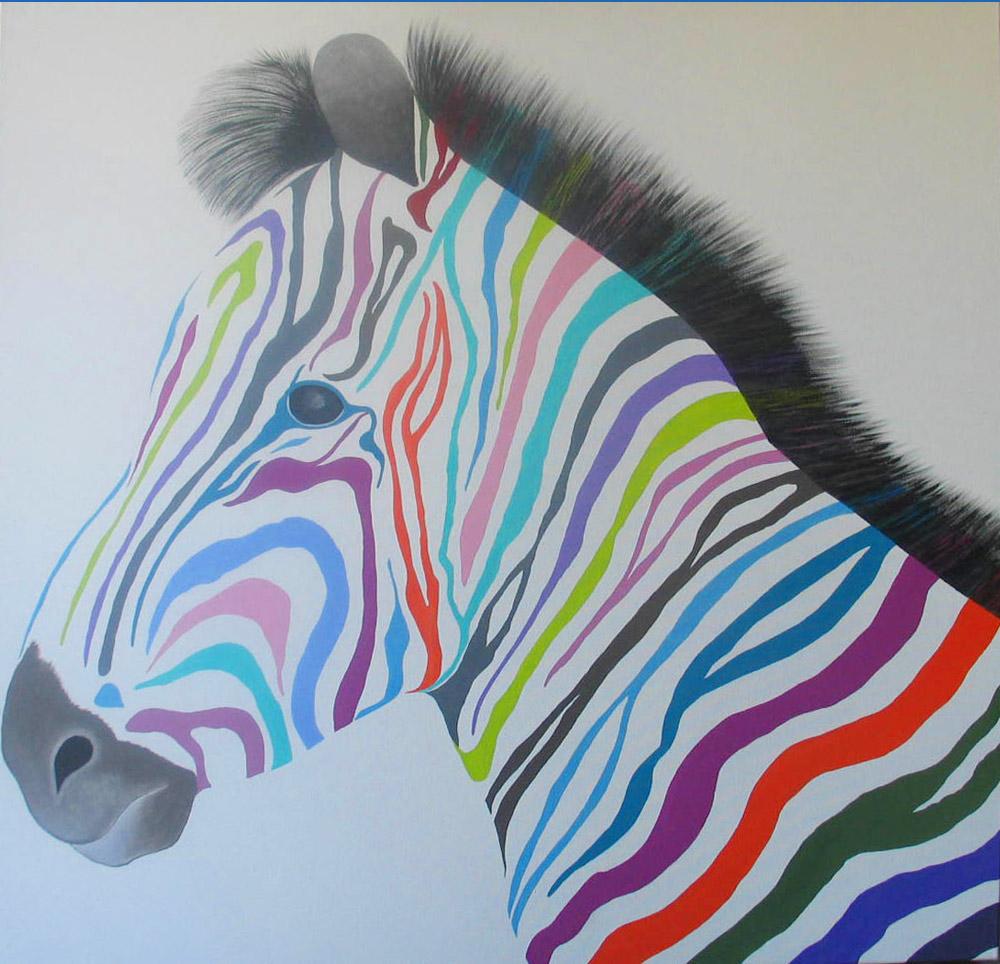 zèbre multicolor