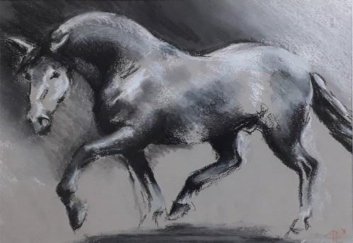 Dessin d'un cheval en liberté