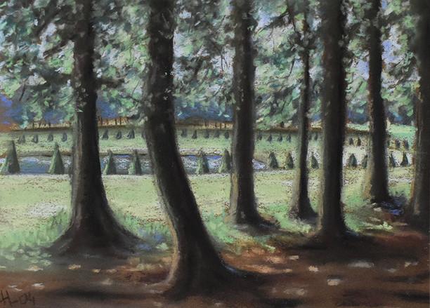 Parc de Marly le roi (78)