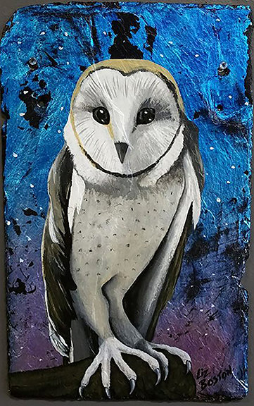 **** SOLD **** Barn Owl