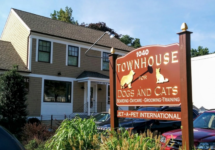 Town House for dogs & cats outside