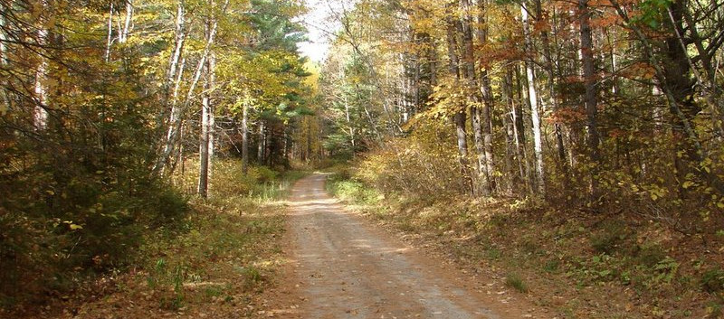 atv trails chippewa national forest.jpg