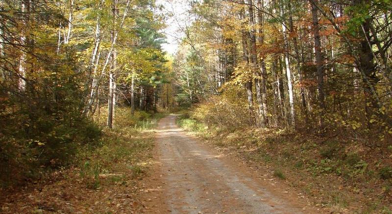 atv trails chippewa national forest.jpg