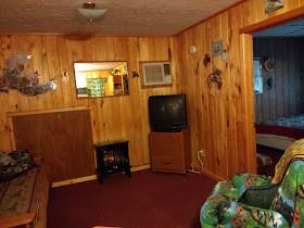 birds nest cabin rental living room