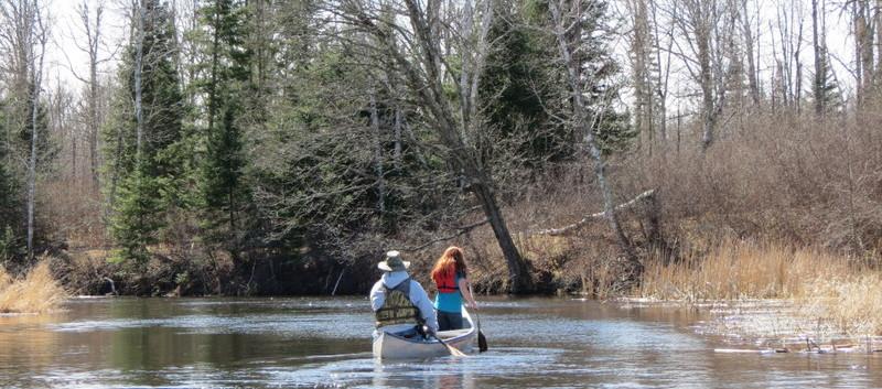 canoeing in the chippewa
