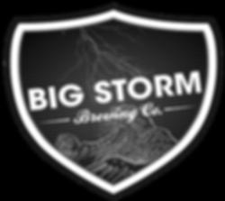 BIG STORM LOGO PNG.png