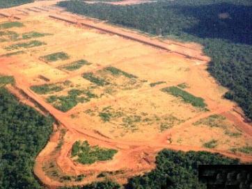 Bauxite mining deforestation