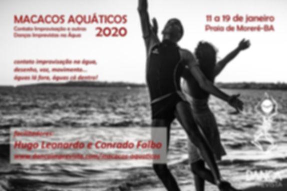Macacos_Aquáticos_2020.jpg