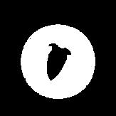 fl studio logo circle.png