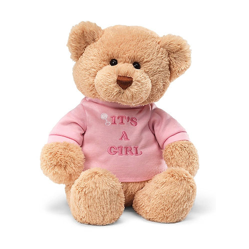 It's a Girl Teddy Bear 泰迪熊